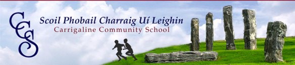German Courses in Carrigaline Community School